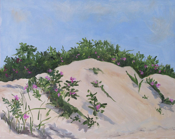Small Dune with Saltspray Roses