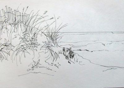 Ocean Beach, 5.5 x 8.5, pen and ink