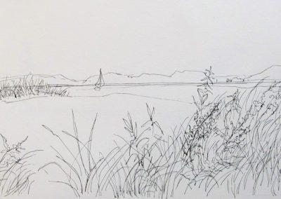 Sail Long Beach, 7.5 x 12, pen and ink